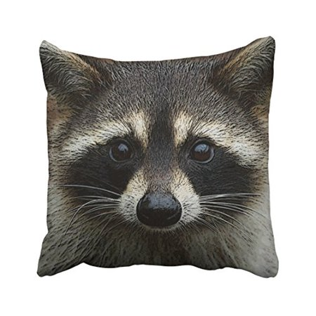 WinHome Decorative Cute Young Raccoon Face Mask and Stare Close Up Pillow Cover Size 18x18 inches Two - Mask Pillow