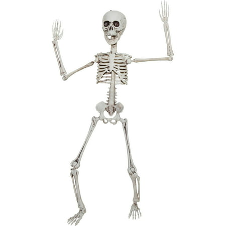 Poseable Skeleton 20in Halloween Decoration - Halloween Basteln
