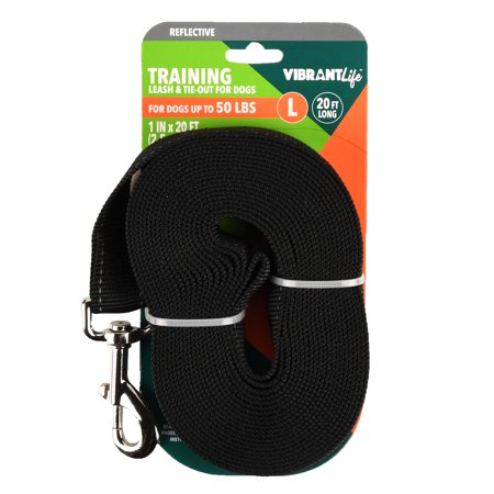 Vibrant Life Black Dog Training Leash & Tie Out, Large, 20 ft, 1 in
