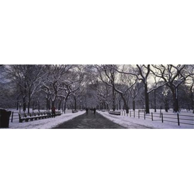 Panoramic Images PPI50822L Bare trees in a park  Central Park  New York City  New York State  USA Poster Print by Panoramic Images - 36 x 12 - image 1 of 1