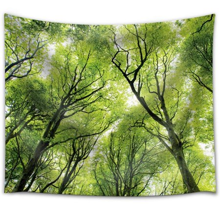 wall26 - Tree Tops in The Forest - Fabric Tapestry, Home Decor - 68x80 inches