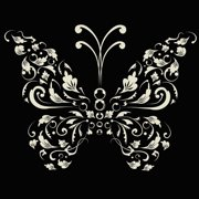 Secretly Designed Single Butterfly Paper Print