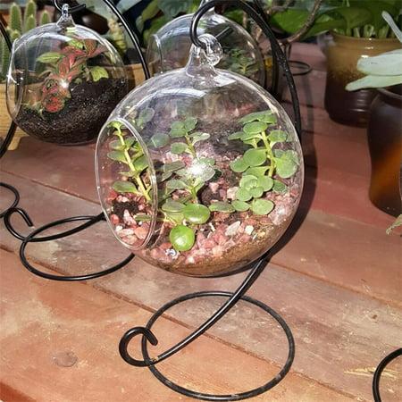 Creative Clear Glass Ball Vase Micro Landscape Air Plant Terrarium Succulent Hanging Flowerpot Container