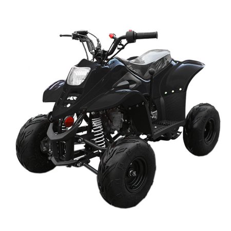 T4B MINI BLAZER ATV 110cc KIDS Dirt Quad Recreational Outdoors, Off-Road, All Terrain, 4 stroke, single-cylinder, air-cooled - Green - image 1 de 7
