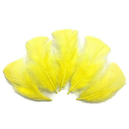 1/4 Lb - Yellow Turkey T-Base Wholesale Body Plumage Feathers (Bulk)