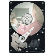 160GB SATA 3GB/S 7.2K RPM 2MB DISC PROD SPCL SOURCING SEE NOTES