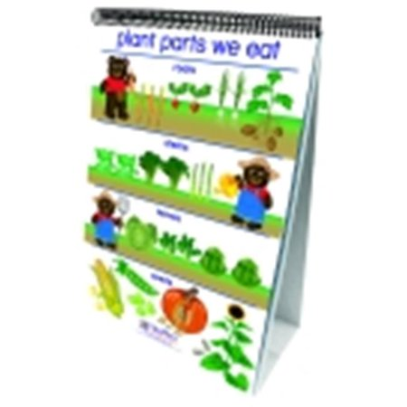 Newpath Learning Early Childhood All About Plants Double Sided Laminated Flip