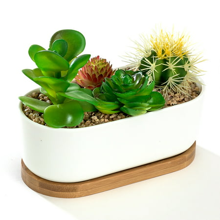 White Oval 6 8 Quot Ceramic Succulent Planter Pot With Bamboo