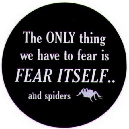 only thing to fear itself spiders button sb3969