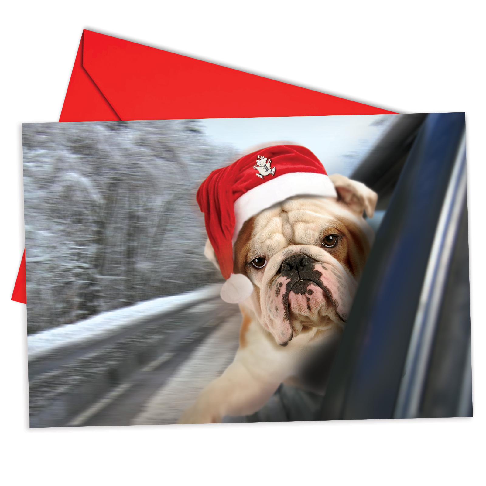 'B6481FXSG Holiday Doggie In The Window Christmas Cards' Box Set of 12 Humor Merry Christmas Cards with Envelopes by NobleWorks