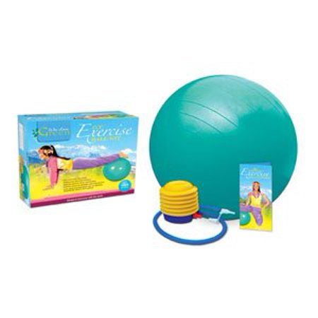 Home gym equipment: eco exercise ball kit with poster small