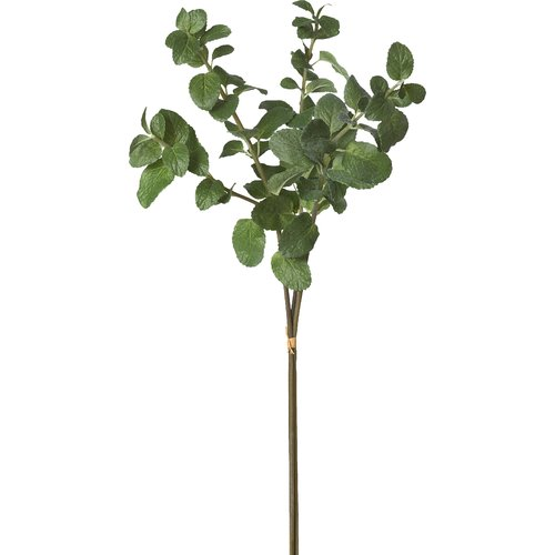 Teters Floral Mint Stem X 3 Bndl