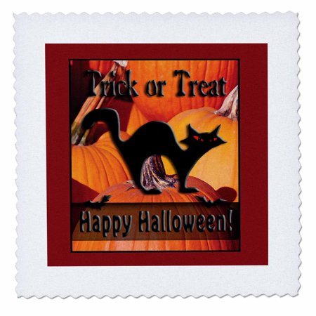 3dRose Black Cat on Pumpkins Trick or Treat Happy Halloween - Quilt Square, 10 by 10-inch - Halloween Quilt