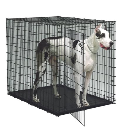 Midwest Starter Series 54 in. Single Door Dog Crate with