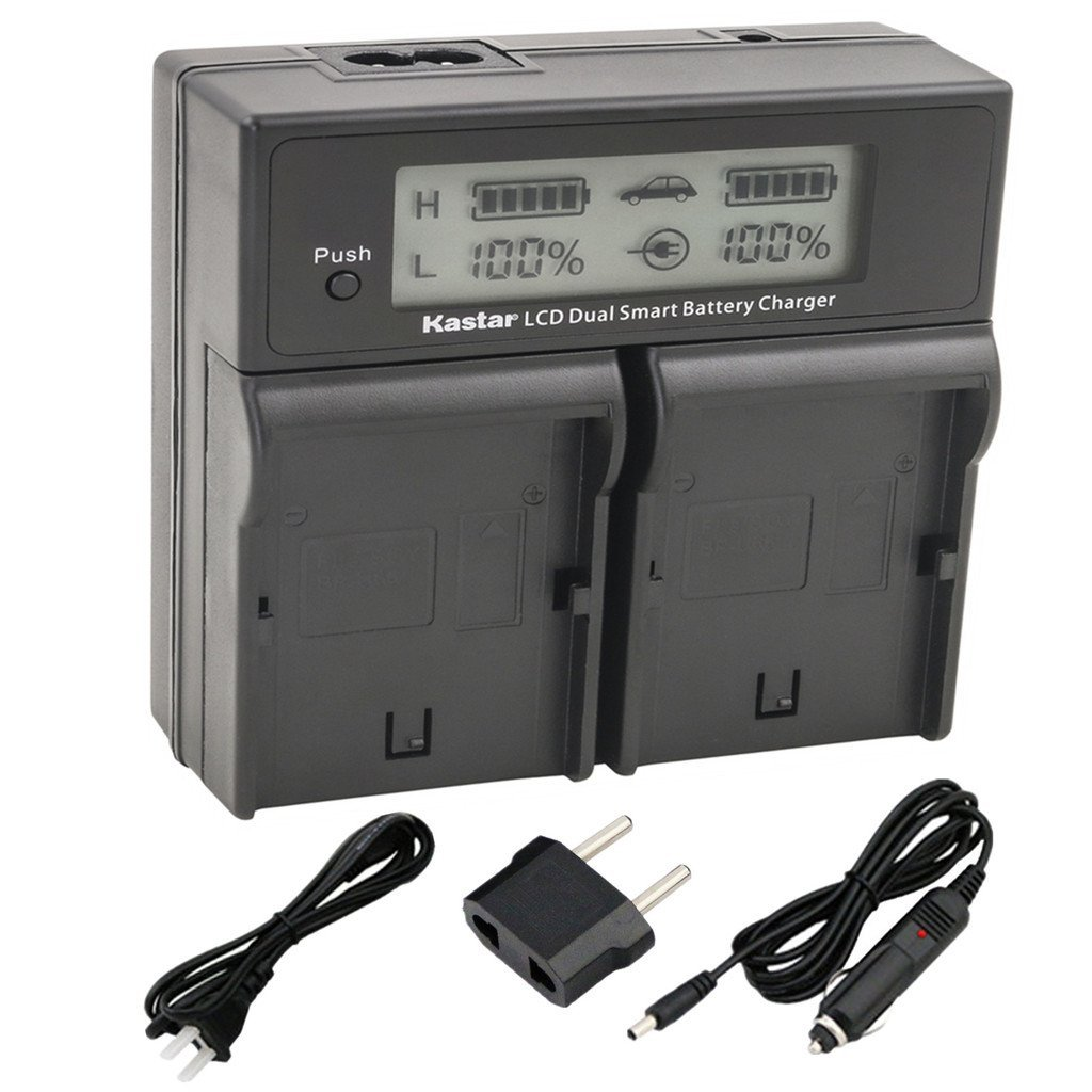 Kastar LCD Dual Smart Fast Charger for Canon LP_E4, LPE4 ...