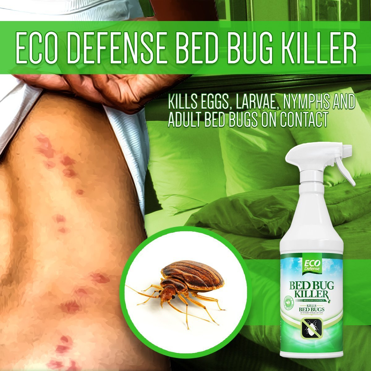 oz bug dust and eradicator repellent pd mite bed shop insect liquid fl