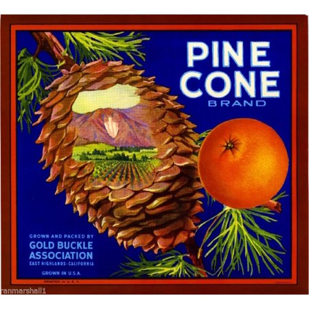 East Highlands Pine Cone Lake Arrowhead Orange Citrus Fruit Crate Label Print (Pine Cone Crafts For Adults)