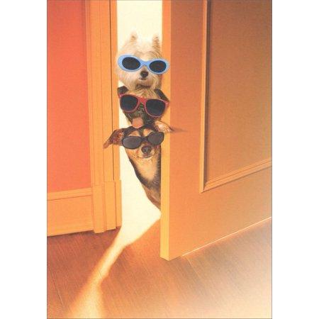 Marian Heath Dogs Peeking Around Door Birthday - Door Flat Card
