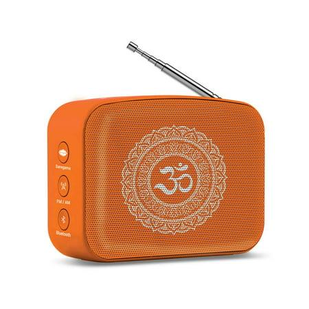 Saregama Carvaan Mini Bhakti Bluetooth Speaker (The Best Mini Speakers)