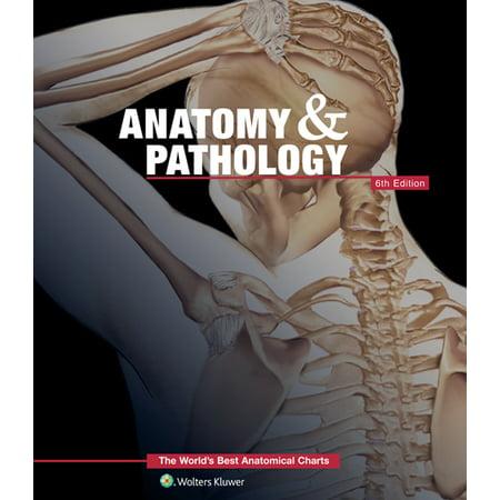 Anatomy and Pathology 6th Edition Book