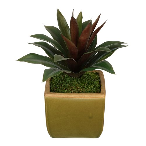 House of Silk Flowers Inc. Artificial Succulent Desk Top Plant in Pot