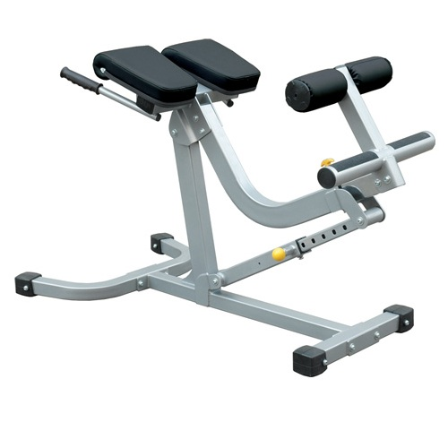 Champion Back and Abdominal Exercise Machine