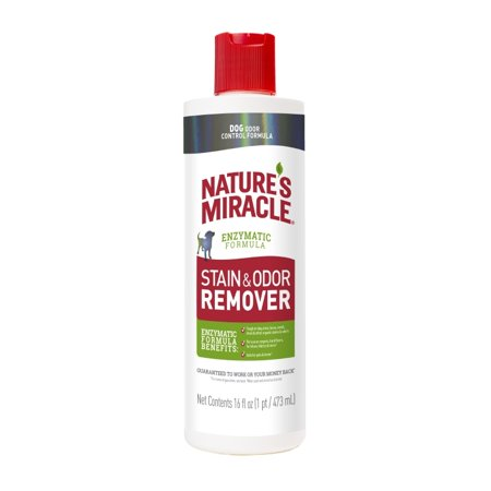 Dog Stain Remover - Nature's Miracle Dog Stain and Odor Remover Pour, 16-Ounce