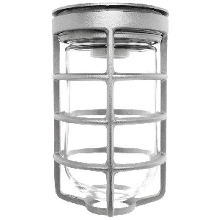 RAB Lighting VAPORPROOF 100 CEILING WITH GLASS GLOBE CAST GUARD