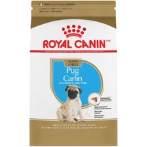 Dog Food: Royal Canin Pug