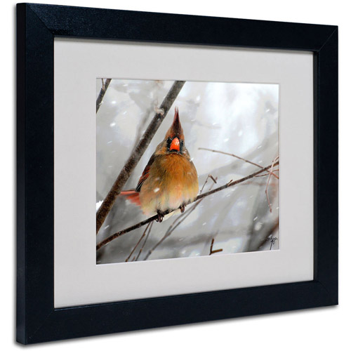 Trademark Fine Art 'What the...' Framed Matted Art by Lois Bryan