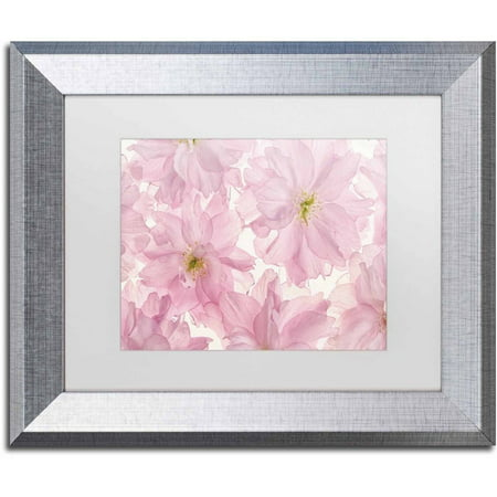 Trademark Fine Art 'Pink Cherry Blossom' Canvas Art by Cora Niele, White Matte, Silver (Pink Cherry Blossoms)