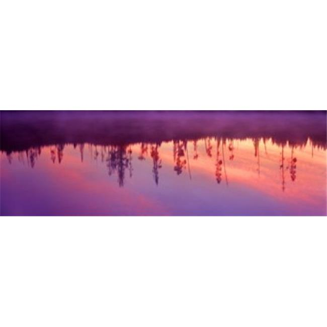 Panoramic Images PPI103957L Reflection of plants in a lake at sunrise  Taggart Lake  Grand Teton National Park  Wyoming  USA Poster Print by Panoramic Images - 36 x 12