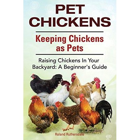 Pet Chickens. Keeping Chickens as Pets. Raising Chickens in Your Backyard : A Beginners Guide.
