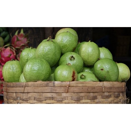 Tropical Fruit Picture (Canvas Print Green Fruit Exotic Fresh Guava Tropical Market Stretched Canvas 32 x 24 )