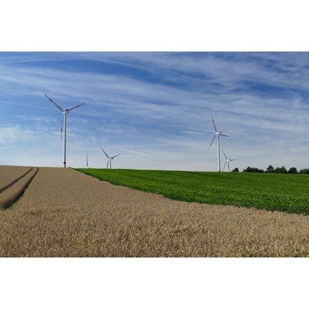 LAMINATED POSTER Wind Turbines Rotors Field Arable Vision Nature Poster Print 24 x (Wind Turbine Rotor)