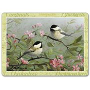 Counter Art CART81280 Beautiful Songbirds Hardboard Table Mats, Set of 2