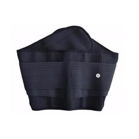 Active Authority Y 123L B Waist Support   Lumbar Brace   Lower Back Belt  Pain Relief  Breathable Material   Black  L Size  110Cm 23Cm