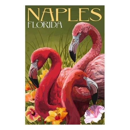 Naples, Florida - Flamingos Print Wall Art By Lantern Press