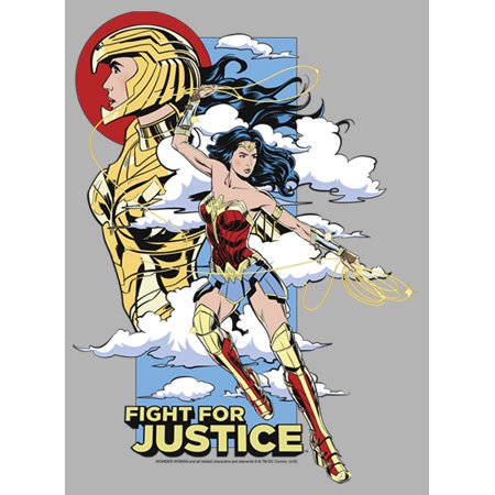 Wonder Woman Men S Wonder Woman 1984 Fight For Justice Pull Over Hoodie Walmart Com Walmart Com
