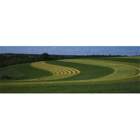 Panoramic Images PPI37379L Curving crops in a field  Illinois  USA Poster Print by Panoramic Images - 36 x 12 - image 1 of 1