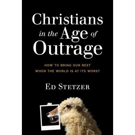Christians in the Age of Outrage : How to Bring Our Best When the World Is at Its (Seduction At Its Best)