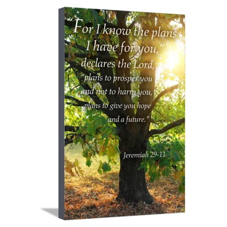 Jeremiah 29:11 - Inspirational Bible Verse - for I know ...