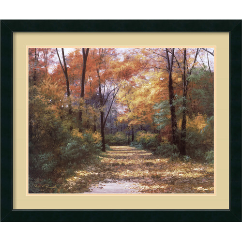 Amanti Art 'Autumn Road' by Diane Romanello Framed Painting Print