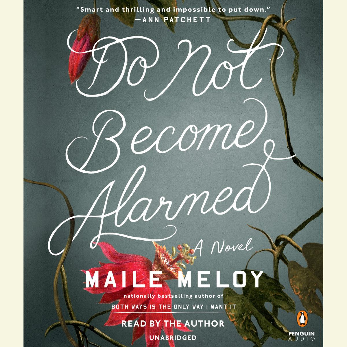 Do Not Become Alarmed - Audiobook
