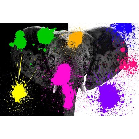 Safari Colors Pop Collection - Black & White Elephant Print Wall Art By Philippe Hugonnard