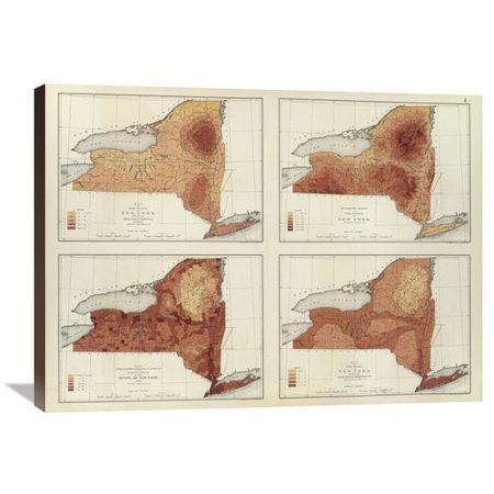 Global Gallery New York  Rainfall  Population  Elevation  Temperature  1895 By Henry Gannett Graphic Art On Wrapped Canvas