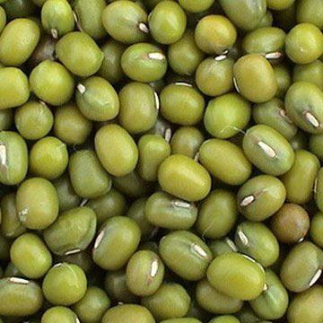 Bulk Peas and Beans Organic Mung Beans - 25 Lb.