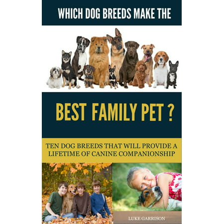 Which Dog Breeds Make the Best Family Pet? Ten Dog Breeds That Will Provide a Lifetime of Canine Companionship -