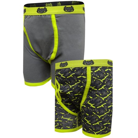 How To Train Your Dragon 2 Pack Boxer Brief (Best Way To Train A Boxer)