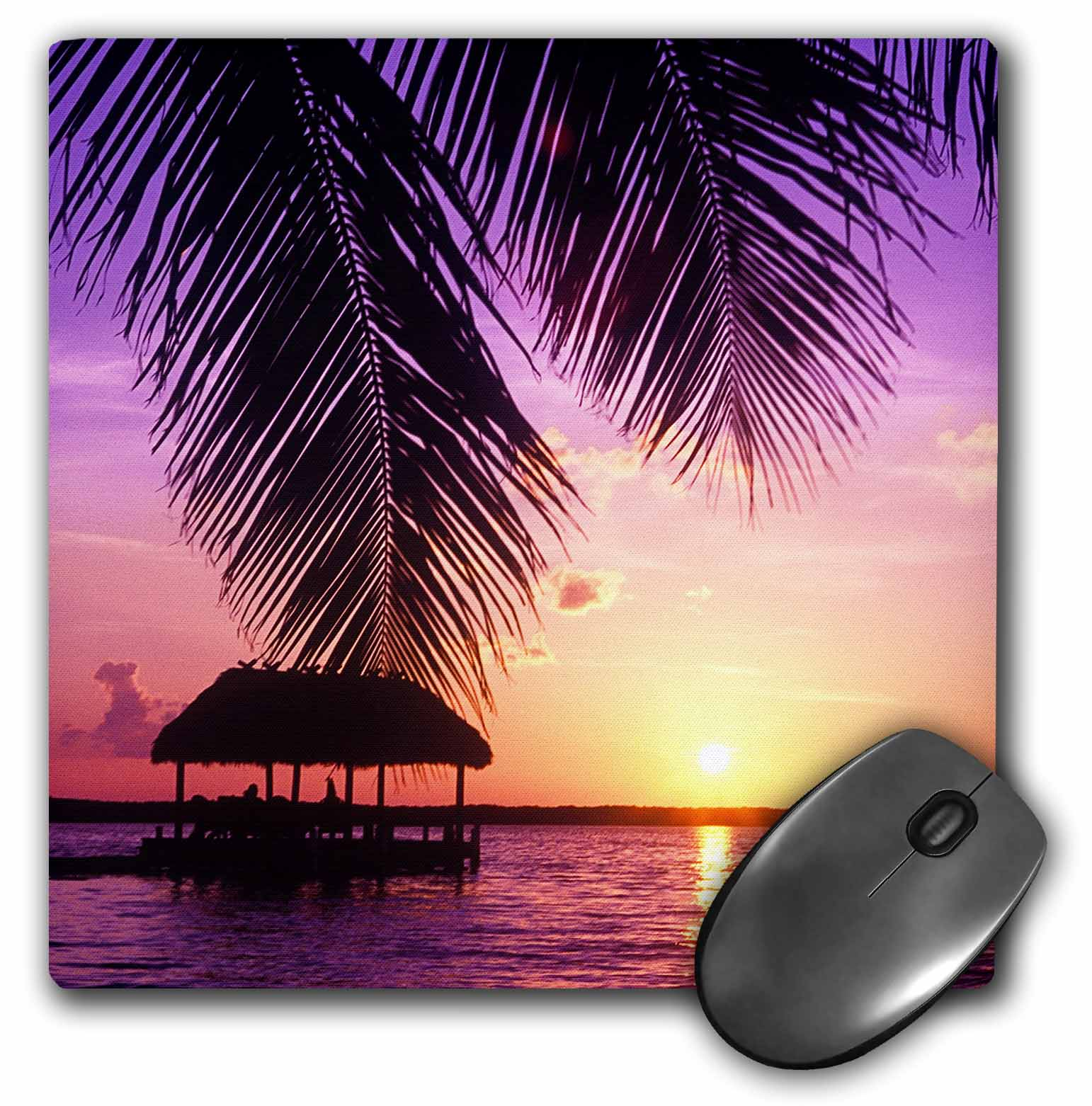 3dRose John Pennekamp State Park, Key West, Florida - US10 GJO0522 - Greg Johnston, Mouse Pad, 8 by 8 inches